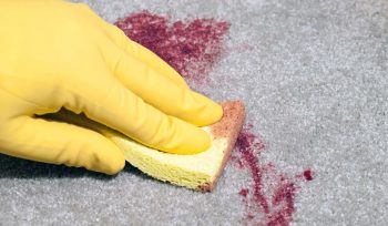 Blutflecken entfernen in Nürnberg Erlangen